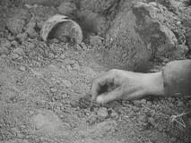 Lewis Milestone's hand (doubling for Lew Ayres) in 'All Quiet on the Western Front'